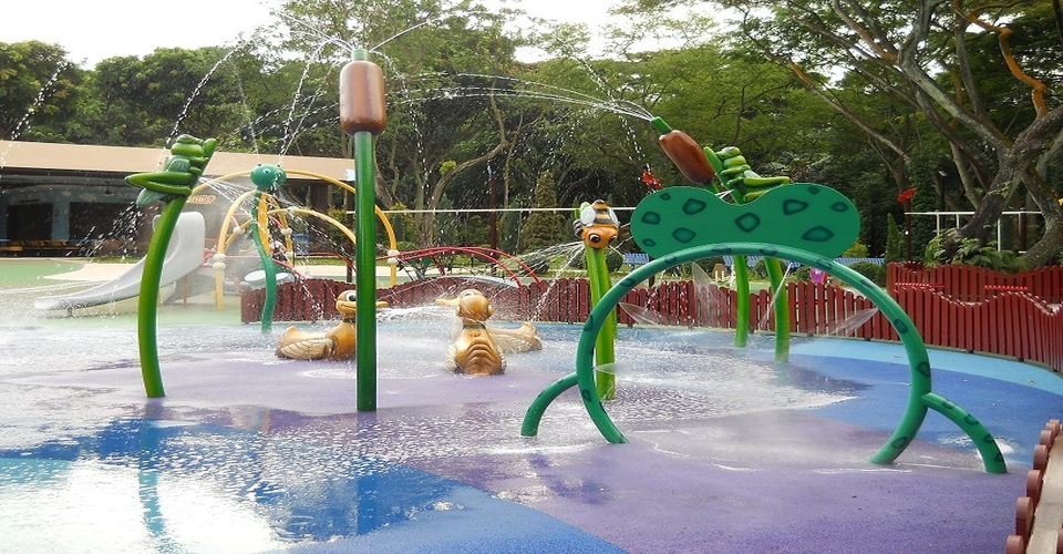 Birdz Of Play, Jurong Bird Park